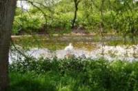 River Exe at Brampford Speke
